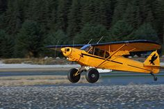 Piper Supercub (made in Lock Haven, PA) kitted out with tundra tires (Alaskan Nikes) is another of my all time favorites. Lock Haven, Stol Aircraft, Alaska Cabin, Piper Aircraft, Bush Pilot, Bush Plane, Private Pilot, Living In Alaska, Civil Aviation