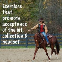 exercises that promote acceptance of the bit, collection and headset in the horse