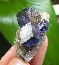 NEW-transparent-Purple-Fluorite-on-Quartz-2-generation-Sanming-China-1255