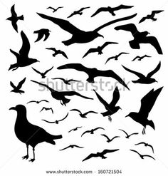 Vector set - seagull silhouette on white background by mw2st, via Shutterstock