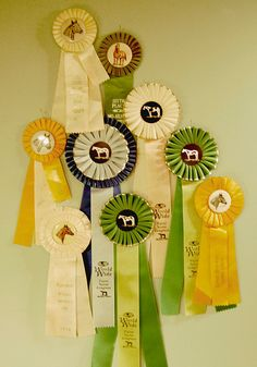 cool way to display all of my ribbons
