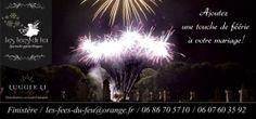 Mariage Brest : Feux d'artifice pour votre mariage à Brest et dans le Finistère, Les Fées du feu Brest, Dandelion, Plants, Movie Posters, Fireworks, Weddings, Flowers, Photography, Dandelions