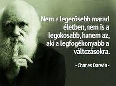darwin Darwin, Einstein, Marvel