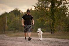 Κάθε ιδιοκτήτης σκύλου οφείλει να γνωρίζει τα δικαιώματα και τις υποχρεώσεις του Park Trails, Dog Walking, Your Dog, Places To Visit, Ottawa, Dogs, Animals, Honeymoon Ideas, Conservation