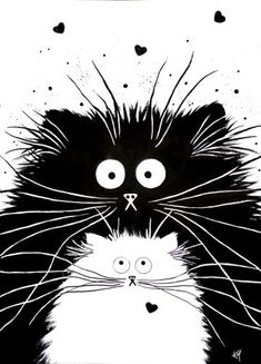Drawn black cat kitty - pin to your gallery. Explore what was found for the drawn black cat kitty I Love Cats, Crazy Cats, Cute Cats, Adorable Kittens, Animal Gato, Art Et Illustration, Cat Illustrations, Cat Drawing, Animal Drawings