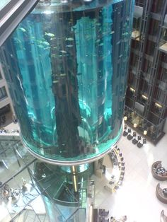82 foot tall aquarium with built in transparent elevator in Berlin.