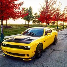 Fast and Furious 8 (@FASTFURlOUS8) | Twitter