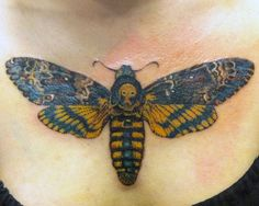Death's Head Moth by Brucius | Yelp