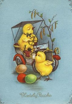 chicks and car with eggs in blue background