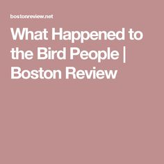 What Happened to the Bird People | Boston Review