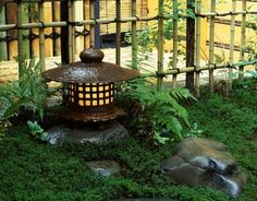 Small Japanese Garden - lantern with ferns