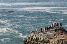 Off to discover the magic of Hermanus and those amazing whales!