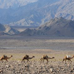 Desierto de Danakil (Eritrea, Etiopía, Djibouti)-Los 40 lugares más maravillosos del Continente Africano en 80 imágenes