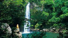 Fiji Romantic Getaways | Taveuni Island Resort & Spa in Taveuni Island, Fiji - Hotel Deals