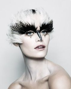 Bird Makeup