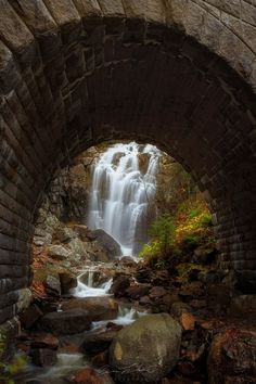 The other side - Hadlock Brook Falls, Acadia National Park, Maine