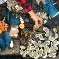 Rappahannock River Olde Salt Oysters at Goldbely : Coolest gifts for men | Cool Mom Picks Holiday Gift Guide 2016