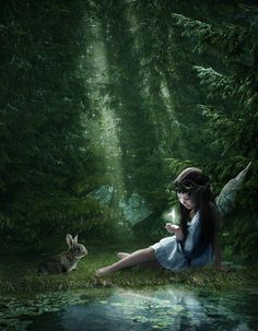 Woodland Fairy and inquisitive bunny