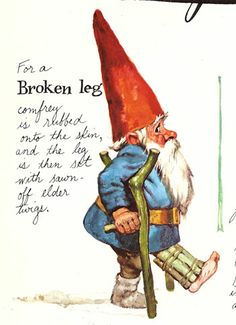 Broken leg gnome. Yes, G-man..; tele-working from  gnome this week. :)