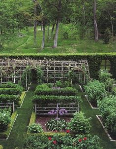 Perfect potager garden.