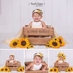 Honey Bee Baby Girl Cake Yellow sunflower flower market By Bear Lane Photography - Richmond, Chesterfield Midlothian Virginia Child and Baby Photographer