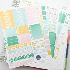 Pink/Mint Lemonade Weekly Planner Sticker Kit. Perfect for Erin Condren Life Planners! MK015