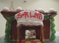 A GINGERBREAD LABORATORY // Just for Fun, Science at Home