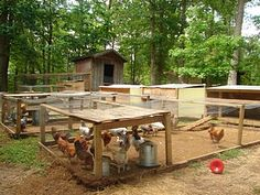 chicken coops | Simple chicken coops with runs.