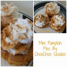 I LOVE pumpkin. Seriously!!! Its my favorite food group. Over the years I have tried many different pumpkin pie recipes until I found the perfect one. And then I perfected. I added what I liked fro…