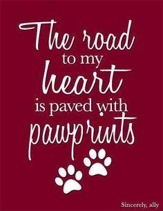 With my furbabies paw prints