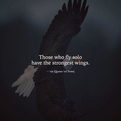 Quotes and Notes - Those who fly alone have the strongest wings. - Quotes and Notes – Those who fly alone have the strongest wings. Wisdom Quotes, True Quotes, Best Quotes, Motivational Quotes, Inspirational Quotes, Qoutes, Fly Quotes, Attitude Quotes, Mood Quotes