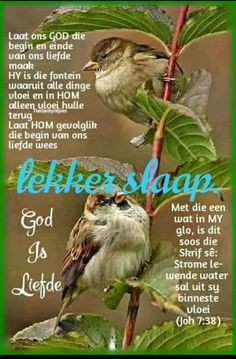 Good Night Wishes, Good Night Sweet Dreams, Evening Quotes, Evening Greetings, Afrikaanse Quotes, Goeie Nag, Angel Prayers, Sleep Tight, Prayer Quotes