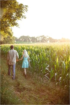 Farm engagement photos in a corn field - so cute! Click to view more!
