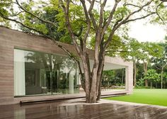 Designed by local architects Isay Weinfeld, Grecia House is a beautiful modern house featuring blooming vegetation inside it. Residential Architecture, Interior Architecture, Local Architects, Le Corbusier, Modern House Design, Contemporary Design, Bungalows, My Dream Home, Exterior Design