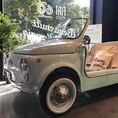 Appassionato di FIAT 500 🇮🇹 (@fiat_500_egmond_aan_zee) • Foto e video di Instagram