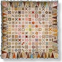Dear Jane Quilt...not sure if it is really Civil War era..but...this is one amazing quilt!