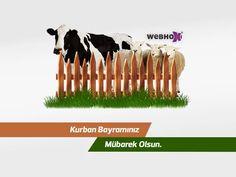 www.webhox.com #webtasarim