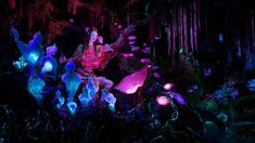 Top Six Things You Must Do at Pandora: World of Avatar - Living By Disney Avatar Films, Avatar Movie, Avatar Disney World, Orlando Theme Parks, Disney Princesses And Princes, Alien Creatures, Disney World Planning, Disney World Tips And Tricks, Plan Your Trip