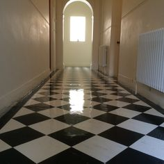 Vinyl floor cleaning stripping and sealing East Sussex Vinyl Floor Cleaners, Floor Cleaning, East Sussex, Vinyl Flooring, Surrey, Hampshire, Tile Floor, Vinyl Floor Covering, Hampshire Pig
