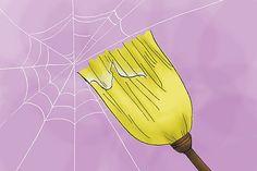 Como acabar com as aranhas em casa