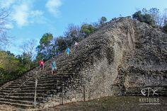 on TripAdvisor - Best Tours in Playa del Carmen, Tulum, Merida Cancun, Tulum, Quintana Roo Mexico, Swimming With Whale Sharks, Mayan Ruins, Tour Operator, Riviera Maya, Merida, Tour Guide