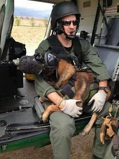 Military War K9 Heroes! God Bless & Protect you!