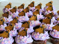 Cute horse cupcakes