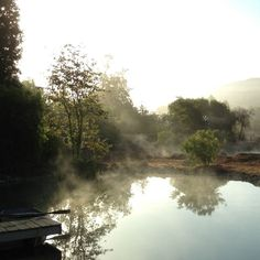 The pond. #patinafarm