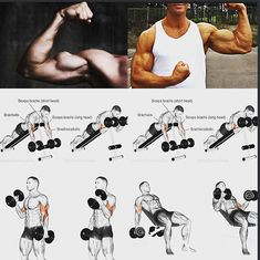 Biceps workout, Arm workout, Triceps workout, Dumbbell workout, Bodyweight worko… – Fitness&Health&Gym For Women Big Biceps Workout, Shred Workout, Gym Workout Tips, Dumbbell Workout, Weight Training Workouts, Muscle Fitness, Workout Programs, Gauche, Exercise