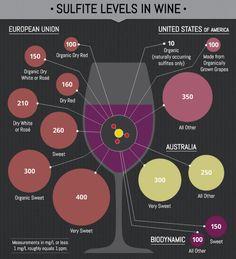 Niveles de sulfitos en el vino #infografíahttps://www.pinterest.com/montbiz/info5/
