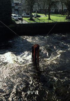 Medusa- EV+A - Limerick Ireland 2003 - Milton Becerra