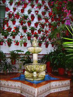 Los Patios de Córdoba, encantadoras fotos - Casas Ecológicas — Casas Ecológicas