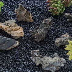 400g Black Natural Polished Pebbles 0.5cm  1cm length image 4 Terrarium Containers, Terrarium Ideas, Planter Ideas, Glass Terrarium, Terrariums, Small Potted Plants, Air Plants, Polished Pebble, Ceramic Planters