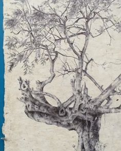 #secretlifeoftrees- detail video of tree #59, ballpoint pen on handmade paper from @nycentralart, tree from #SanJuan, PuertoRico
